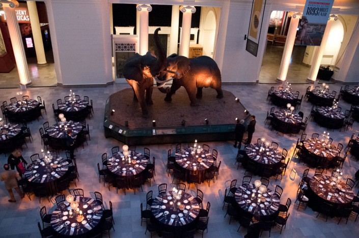 Corporate event photography at Chicago Natural History Museum Conference Detail Photograph from above